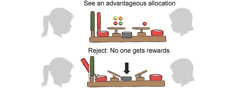 A drawing of two people, facing a table with items on it and a scale. Another sequence of the image shows the option of rejecting the items and no one receiving anything.
