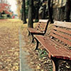 Image of empty bench in Fall