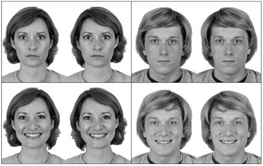 Portraits the participants judged