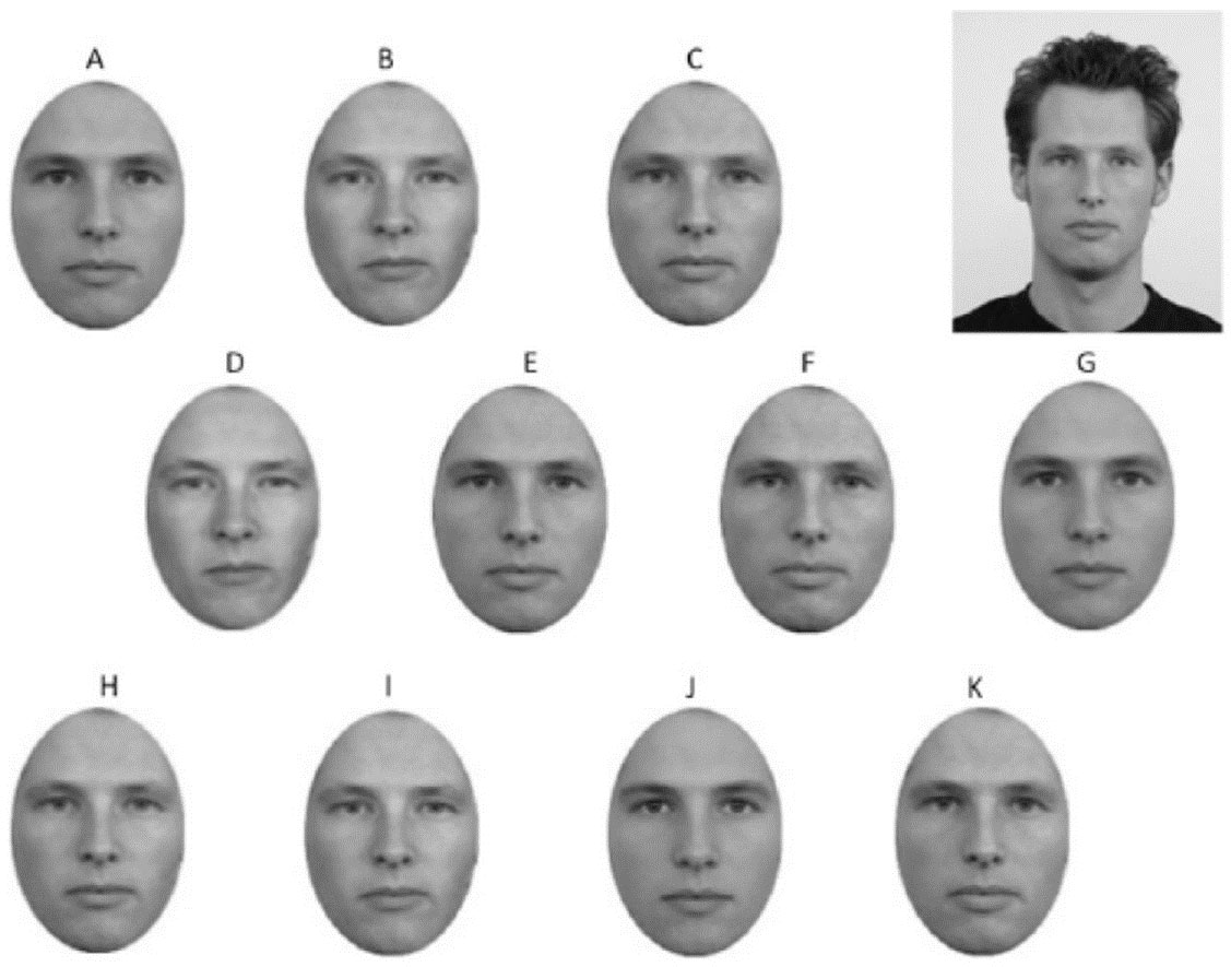The matching activity called for study participants to select one out of eleven cropped faces that matched a sample face.